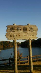 知多市 佐布里池 そうり池