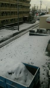 会社前の雪