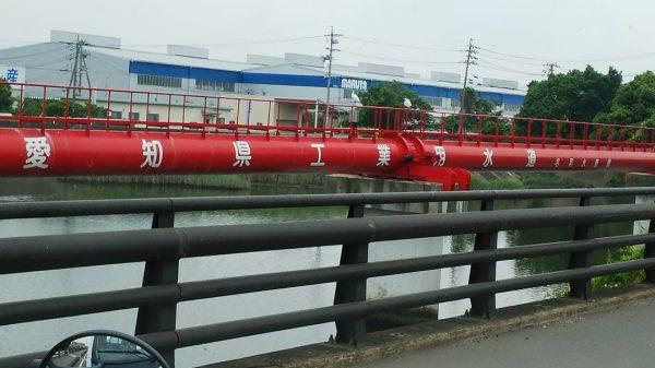 東海市 工業用水道管で鳥が羽休め