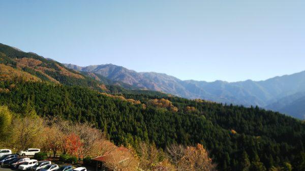 中津川の紅葉1